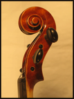 violon étude volute