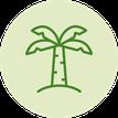 Palmfett; frei von Palmfett; Palmöl; Fette