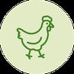 vegan; vegetarisch; Ei; Eiweiß