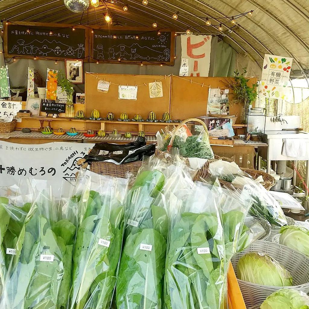 廣田農園の直売所「畑の駅」内観