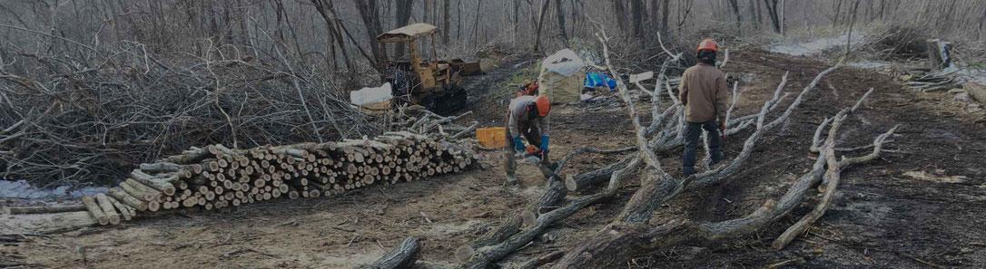 薪の現物を確認したい方、製造現場を視察したい方へ