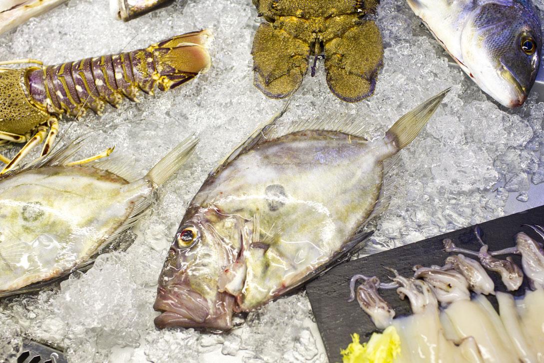 El Marino Port ofrece una gran variedad de pescado y marisco frescos, y su nevera luce impresionante con las capturas recién traídas de la subasta de Dénia