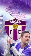 F.C. Arges 1953
