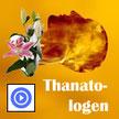 Bestattungsdienste Bremerhaven Thanatologen