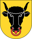 Schweizerische Seefahrtsschule I #hochseeschein I #hochseeschein kurs I #hochseeschein prüfung I #hochseeschein theorie I Kanton Uri I www.schweizerische-seefahrtsschule.ch