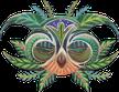 cacao mama owl spirit drawing