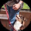 Cours éducation canine obligatoires Genève
