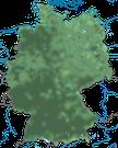 Karte zur Verbreitung der Familie der Rabenvögel in Deutschland