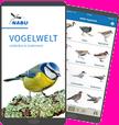 "Neue NABU-App ""Vogelwelt"""