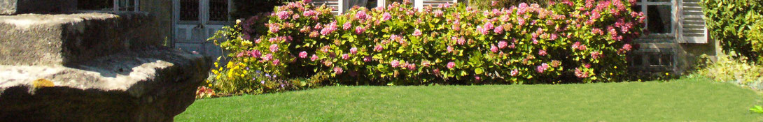 http://www.chambres-hotes-bayeux-jardins.fr - Hortensias