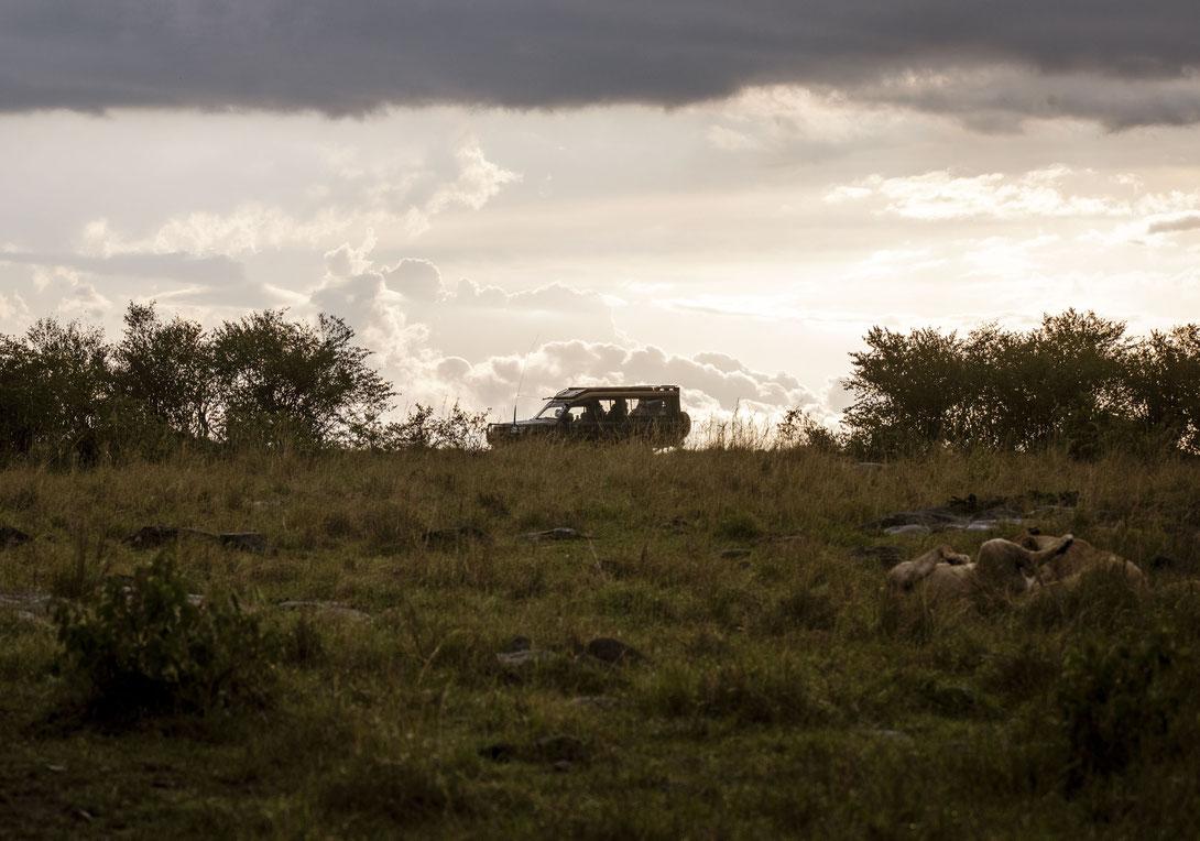 Sonnenaufgang Masai Mara, Kenia