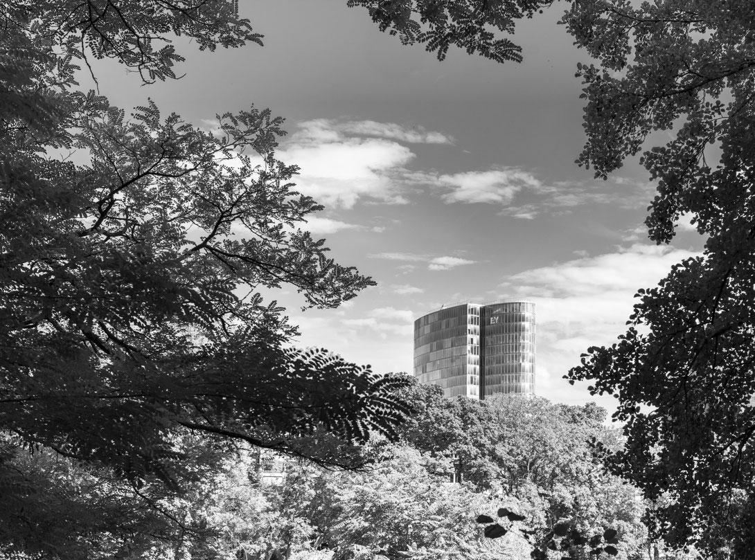 Düsseldorf, fotografiert mit Nikon Z7 und Nikkor Z 50mm F/1.2 S