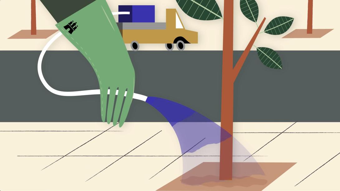 Überlebenskünstler Stadtbaum, Studio Käfig