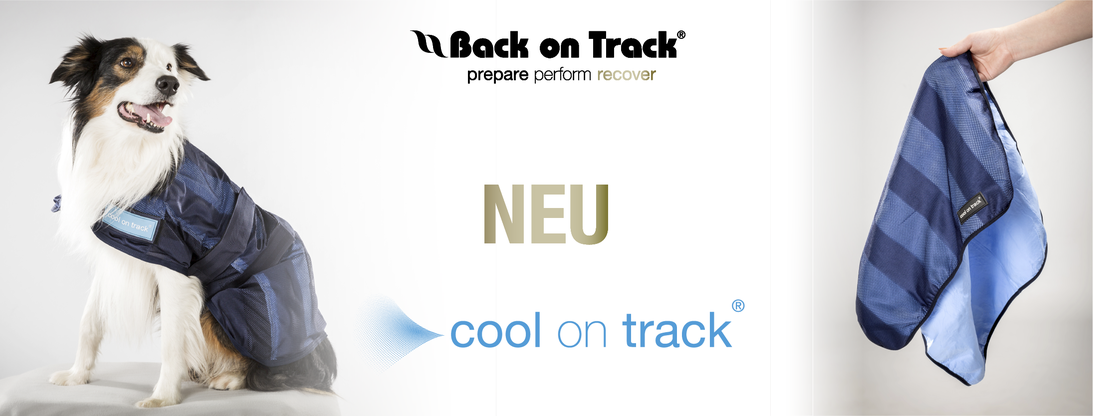 Cool an Track von Back on Track Handtuch cooling mat und dog rug