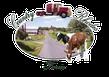 Country Rhodes Farm logo
