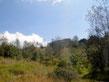 La actividad de la Reserva es de conservación y rehabilitación, se realiza un trabajo de reforestación dentro de la misma y en predios pequeños ubicados en el municipio de Suesca