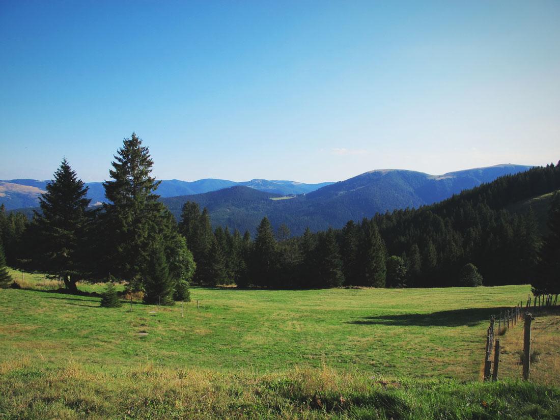 vosges ferme rennes champs forêt auberge montagne