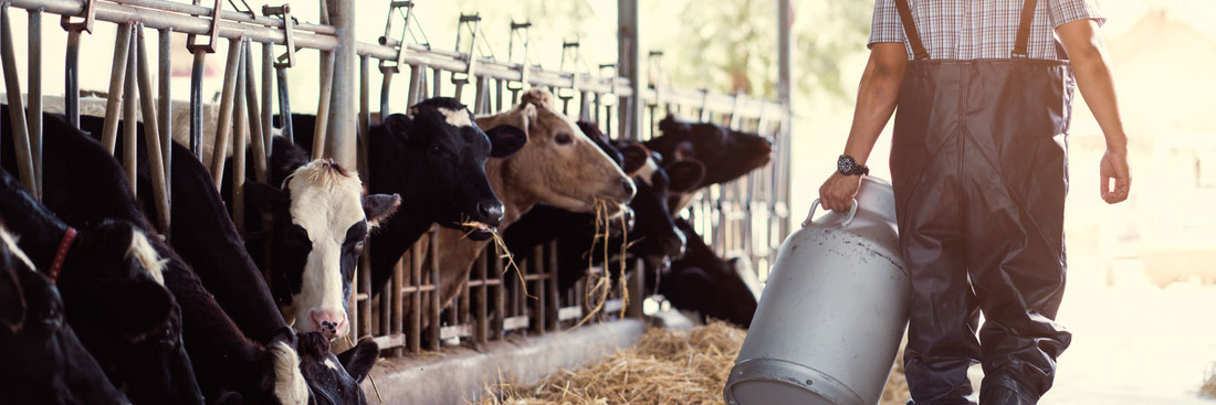 Außergewöhnlich FarmLED - FarmLED Stallbeleuchtung #AA_01