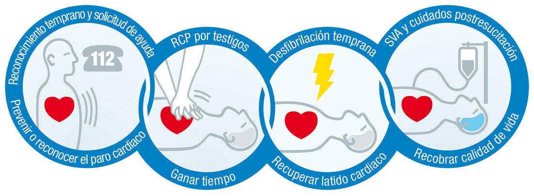 www.cesadebi.com
