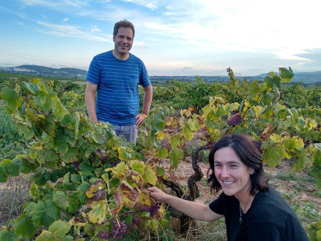 Arantxa de Cara i Marc Milà a les vinyes de La Pineda de Can Descregut