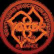 Tigress Yoga, der kraftvolle Power Vinyasa Yoga. Yoga Ausbildung und Yogalehrer-Ausbildung. Yoga Kurs in Zürich Oerlikon.