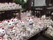 les maneki neko du temple gotokuji avec un guide francophone japon prive
