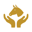 Netzwerk Duif Pferdeprofis