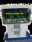 Aquarienund Zubehör bei Zoo Kellner