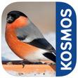 Vögel füttern und erkennen