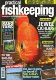 Practical Fishkeeping (PFK) 6/2009 Julian Dignall & Wolfgang Ros