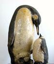 Manchots / Penguins