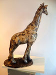 Animaux de la Savane / Animals from the Savanah