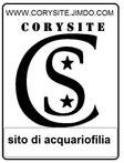 www.corysite.jimdo.com