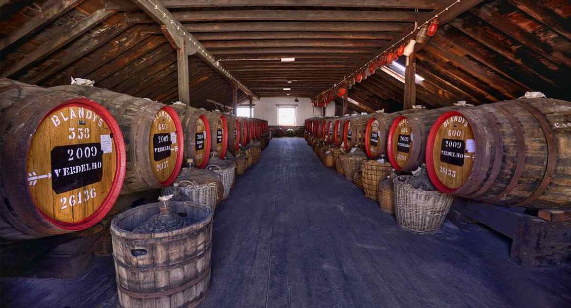Blandys Madeira Wine Company