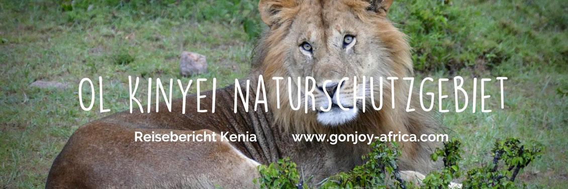 Reisebericht Kenia Ol Kinyei