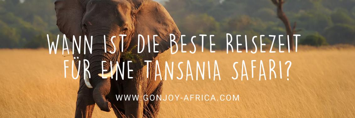 Beste Reisezeit Tansania Safari