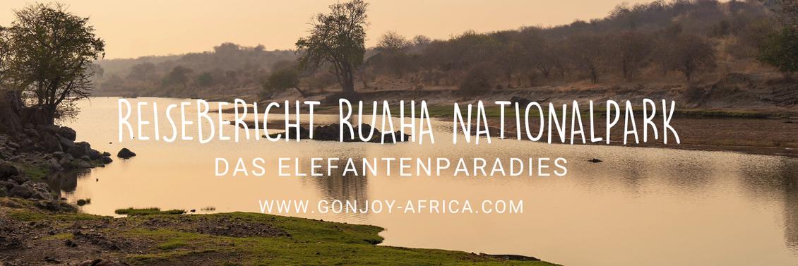 Ruaha River, Ruaha Nationalpark Tansania