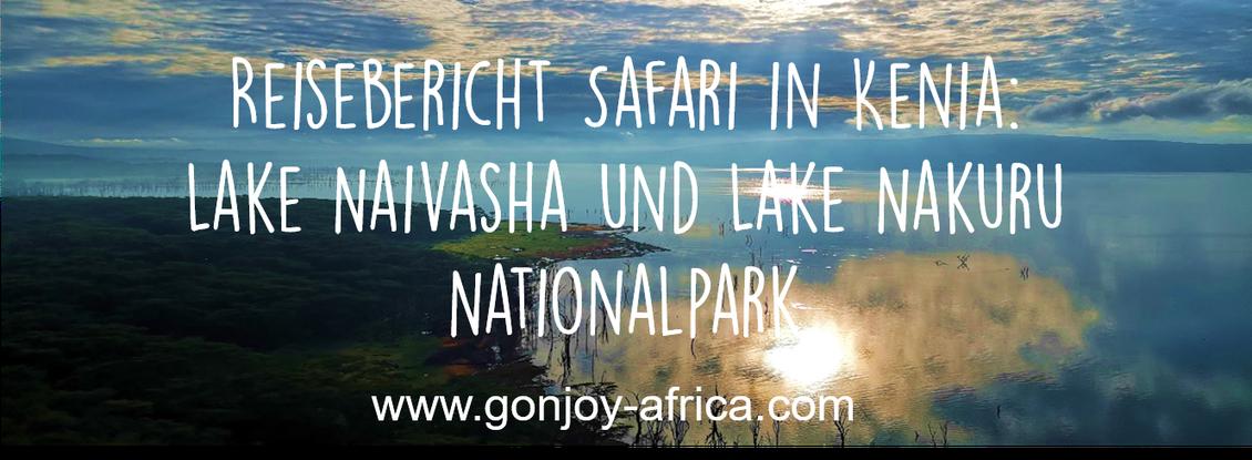 Lake Naivasha Lake Nakuru Kenia Safari