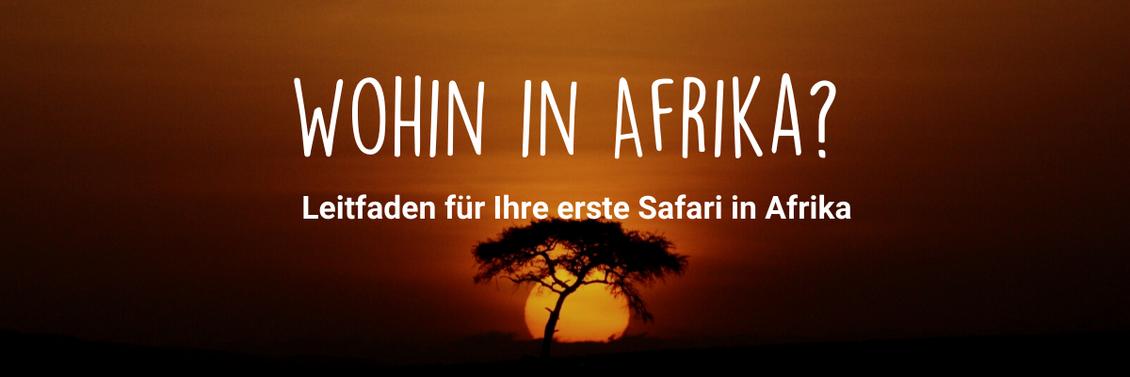 Wohin in Afrika reisen?
