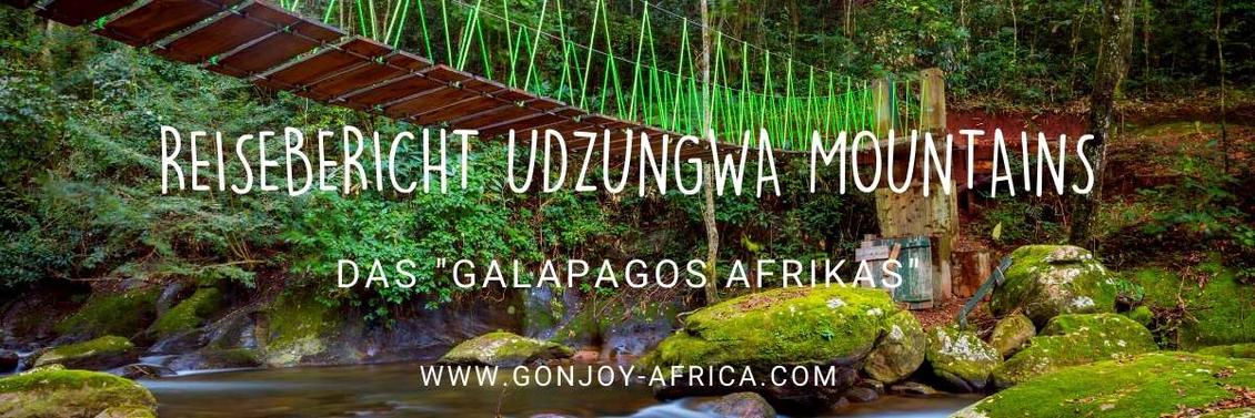 Udzungwa Mountains Tansania