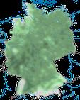 Karte zur Verbreitung des Kernbeißers (Coccothraustes coccothraustes) in Deutschland.