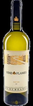 The Vine in Flames Pinot Gris (Grauer Burgunder (Grauburgunder) )2015