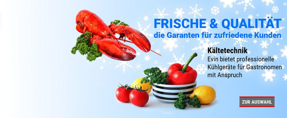 Gastronomie Kühltechnik bei Evin Gastro