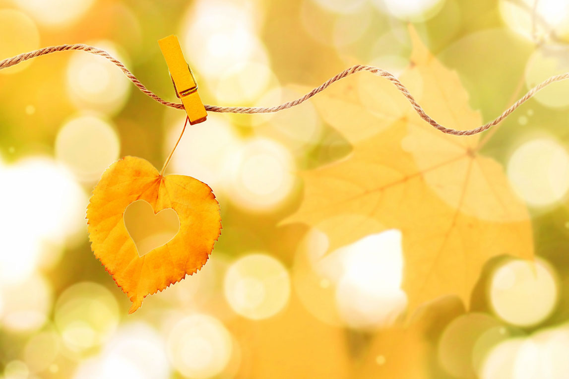 Mindfulness Zelfcompassie Mind-Workz Uden