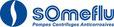 Cabinet de conseil en organisation PME pour SOMEFLU