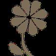 éclosion-fleur