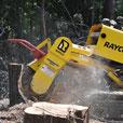Rayco Stubbenfräse - Holzarbeiten