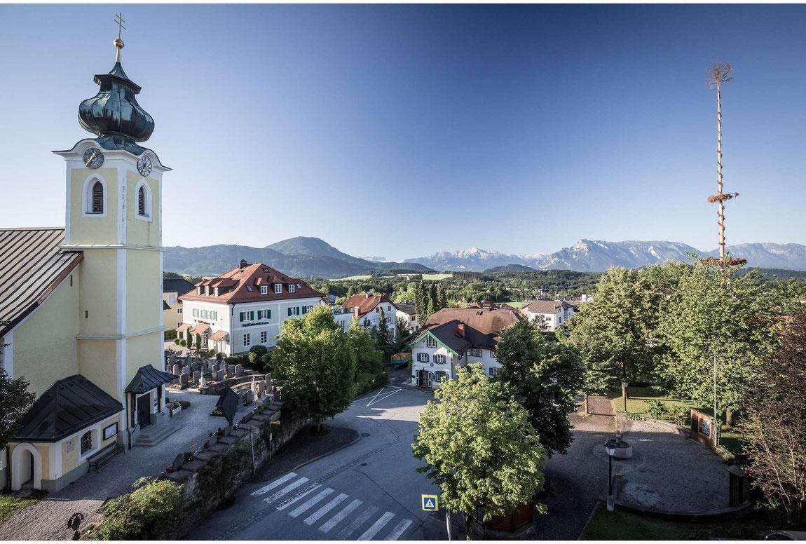 Blick von Elixhausen auf die Alpen