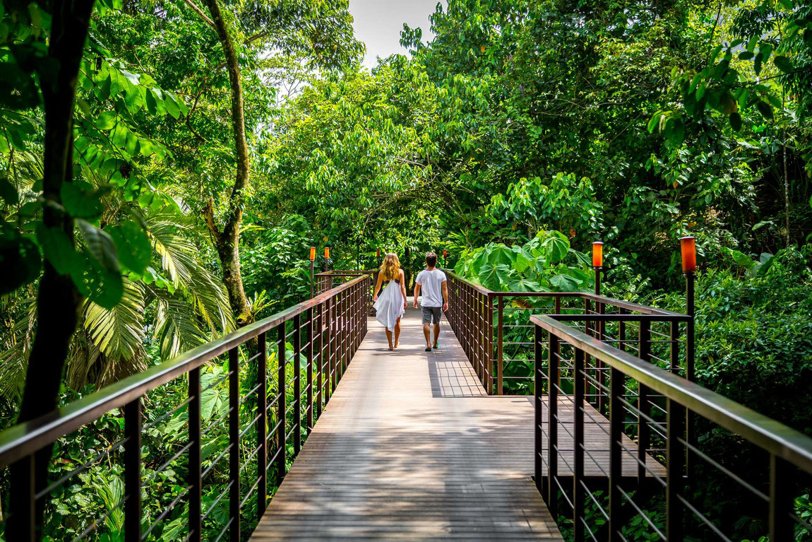 Hotelansicht des Nayara Resorts mit Brücke über der Dschungel