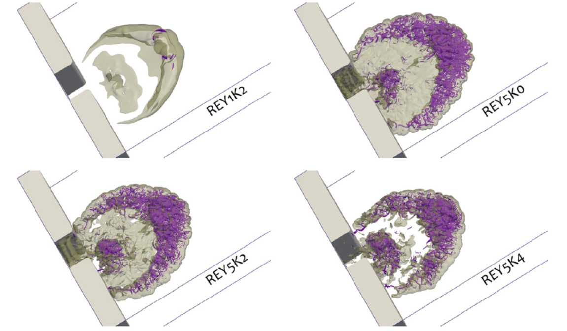 Turbulent structures of the gravity currents illustrated by the Q criterion